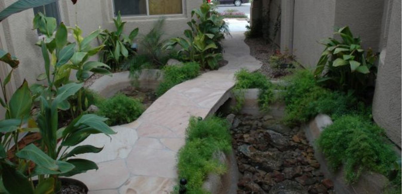 Company Information - Caribbean Dreams Landscapes - Phoenix Arizona